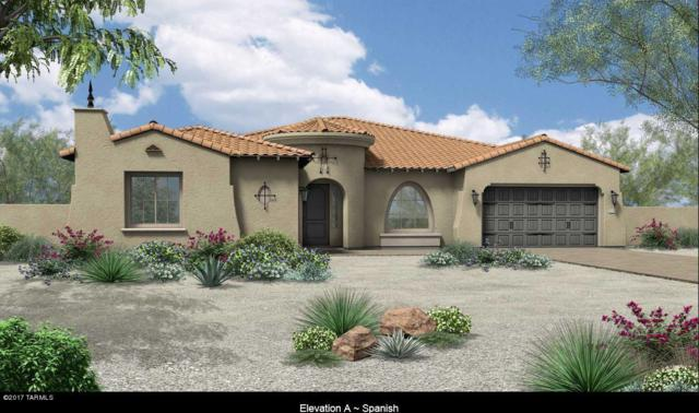 13463 N Trailing Indigo Court, Oro Valley, AZ 85755 (#21716637) :: Long Realty Company