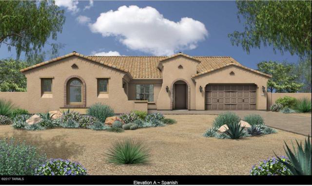 13447 N Trailing Indigo Court, Tucson, AZ 85755 (#21716639) :: Long Realty Company