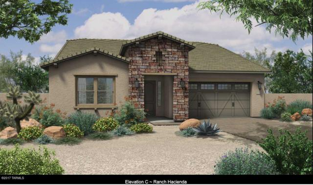 13249 N Rainbow Cactus Court, Tucson, AZ 85755 (#21716644) :: Long Realty Company