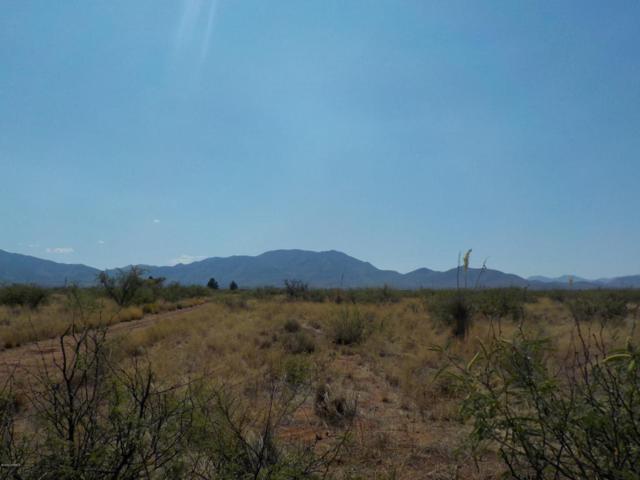 1 Lot W Emery Street, Cochise, AZ 85606 (#21716648) :: Long Realty Company