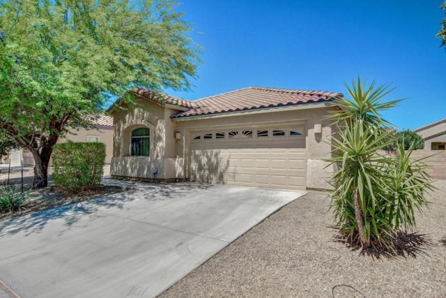 12701 N Fallen Fence Lane, Marana, AZ 85653 (#21716678) :: Long Realty Company