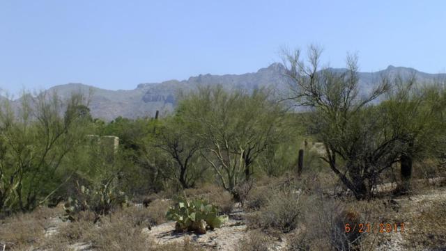 5209 N Camino Real #80, Tucson, AZ 85718 (#21716744) :: RJ Homes Team