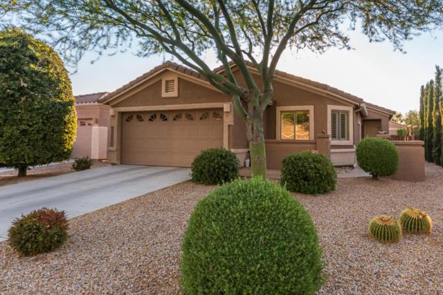 2265 E Skipping Rock Way, Oro Valley, AZ 85737 (#21716814) :: The Anderson Team | RE/MAX Results