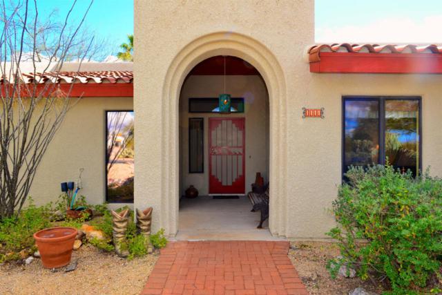 1111 W Chula Vista Road, Tucson, AZ 85704 (#21716850) :: The Anderson Team | RE/MAX Results