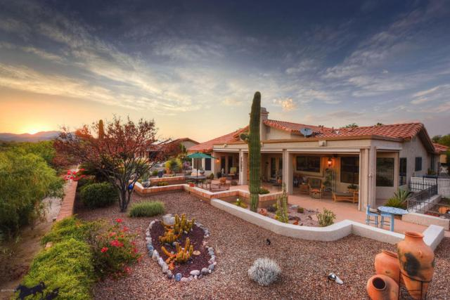 14313 N Alamo Canyon Drive, Oro Valley, AZ 85755 (#21716950) :: Long Realty - The Vallee Gold Team