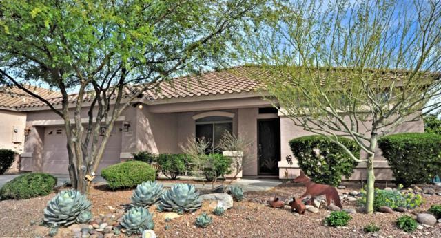 5064 N Louis River Way, Tucson, AZ 85718 (#21716960) :: Re/Max Results/Az Power Team