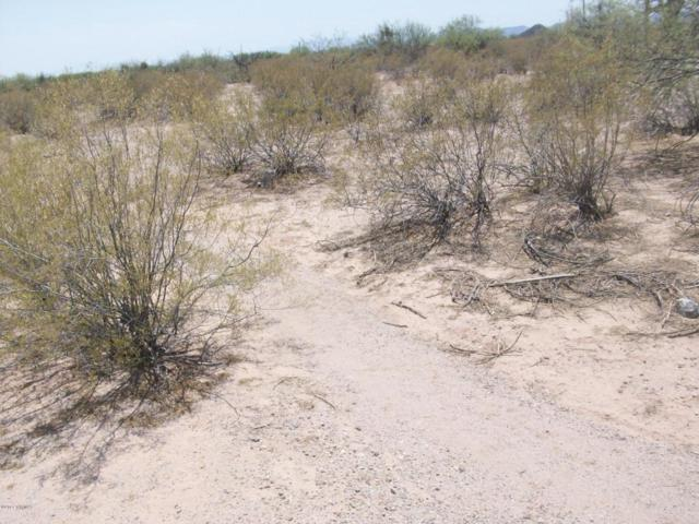 7900 N Blanco Wash Trail, Marana, AZ 85653 (#21717004) :: Re/Max Results/Az Power Team