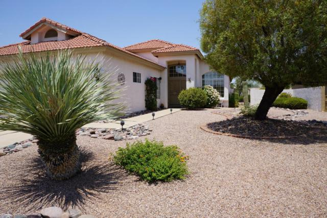 64030 E Meander Drive, Tucson, AZ 85739 (#21717165) :: Long Realty - The Vallee Gold Team