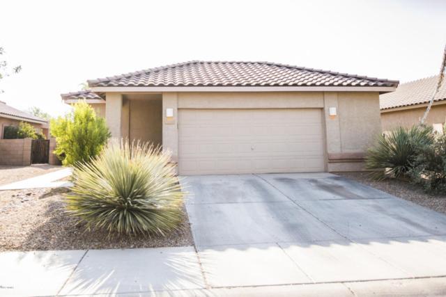 12700 N Rodeo Land Avenue, Marana, AZ 85653 (#21717175) :: Re/Max Results/Az Power Team