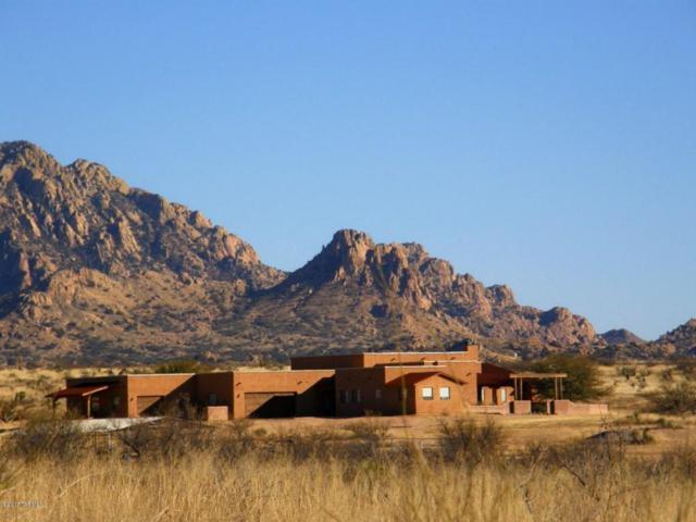 6851 E Horse Ranch Road, St. David, AZ 85630 (#21717176) :: Long Realty - The Vallee Gold Team