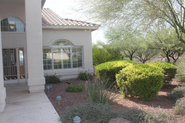 11089 N Lapis Court, Tucson, AZ 85737 (#21717224) :: Long Realty - The Vallee Gold Team