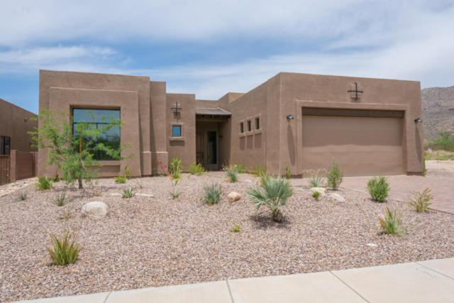 11041 E Carved Tree Court, Tucson, AZ 85749 (#21717227) :: Long Realty - The Vallee Gold Team