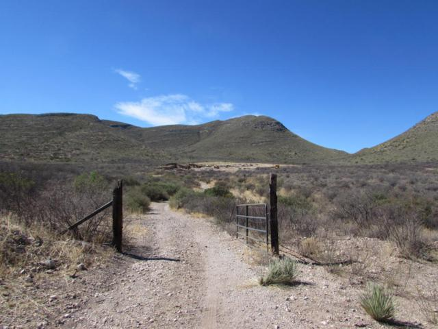 3125 W Red Mountain Road, Bisbee, AZ 85603 (#21717262) :: Long Realty - The Vallee Gold Team