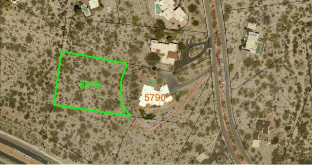 5579 N Cimarron Vista Court #0, Tucson, AZ 85750 (#21717275) :: Re/Max Results/Az Power Team