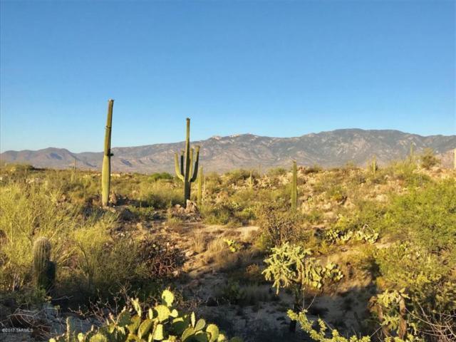 257 E Beekeeper Trail #12, Oro Valley, AZ 85755 (#21717467) :: Long Realty Company