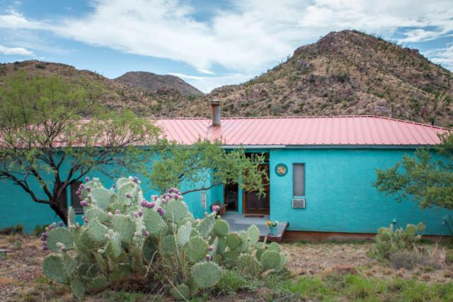 11200 E Camino Aurelia, Vail, AZ 85641 (#21719413) :: The Josh Berkley Team