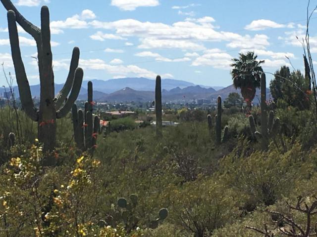 2939 E Camino A Los Vientos #36, Tucson, AZ 85718 (#21720892) :: RJ Homes Team