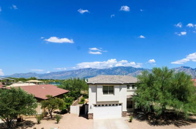 12984 N Yellow Orchid Drive, Oro Valley, AZ 85755 (#21721511) :: Long Realty - The Vallee Gold Team