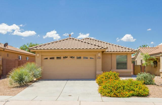 313 N Rock Station Drive, Sahuarita, AZ 85629 (#21721571) :: The Anderson Team | RE/MAX Results