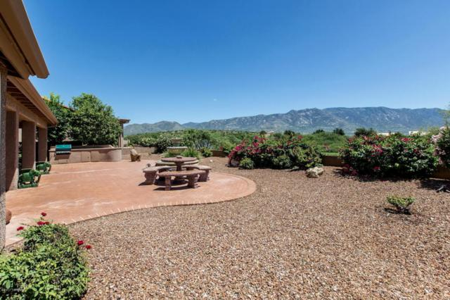 62383 E Iron Crest Drive, Tucson, AZ 85739 (#21721707) :: Long Realty - The Vallee Gold Team