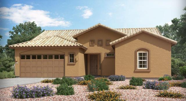 14318 Whitehorn Place, Marana, AZ 85658 (#21721731) :: The Anderson Team | RE/MAX Results