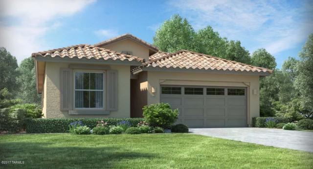 11427 E Dry Wind Drive E, Tucson, AZ 85747 (#21721800) :: Re/Max Results/Az Power Team