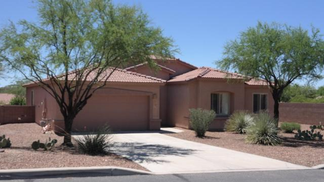 4799 S Paseo Melodioso, Tucson, AZ 85730 (#21721828) :: The Anderson Team | RE/MAX Results
