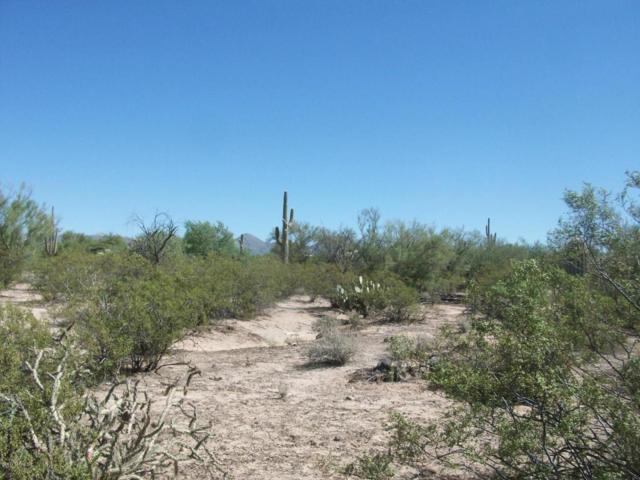 5870 W Potvin Lane 25G, Tucson, AZ 85742 (#21721836) :: The Anderson Team   RE/MAX Results