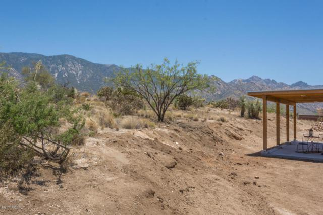 14780 N Swan Rd & Parcel 222-38-082F, Tucson, AZ 85739 (#21721839) :: The Anderson Team   RE/MAX Results