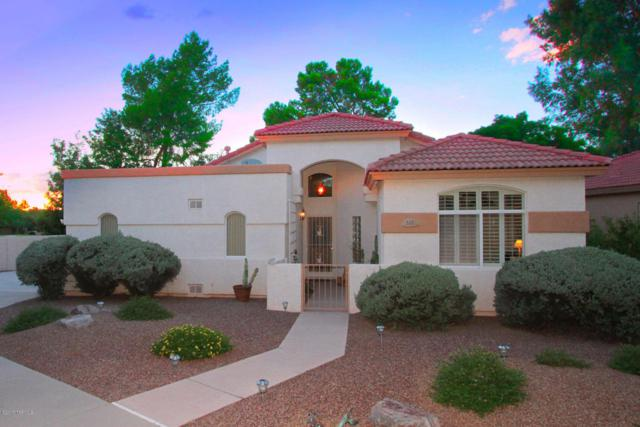 233 E Desert Golf Place, Tucson, AZ 85737 (#21721848) :: Long Realty - The Vallee Gold Team
