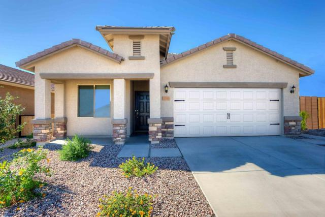 11548 W Fayes Glen Drive, Marana, AZ 85653 (#21721904) :: Re/Max Results/Az Power Team