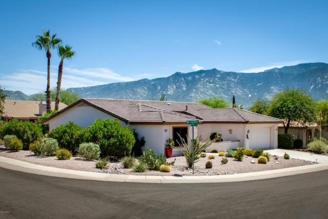 951 E Coachwood Drive, Oro Valley, AZ 85755 (#21721973) :: Re/Max Results/Az Power Team