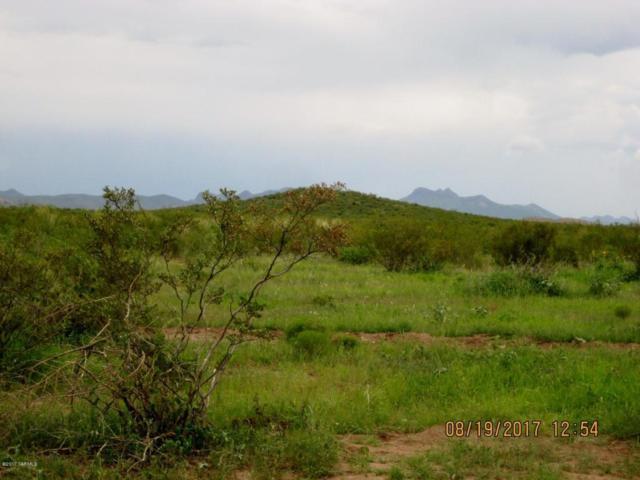 TBD Gila Road, Douglas, AZ 85607 (#21722000) :: Long Realty Company