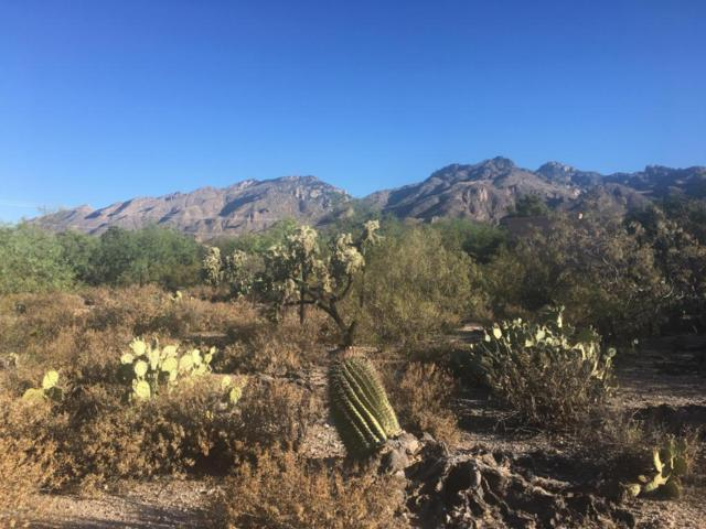 5435 N Stonehouse Place #54, Tucson, AZ 85750 (#21722006) :: Long Realty Company