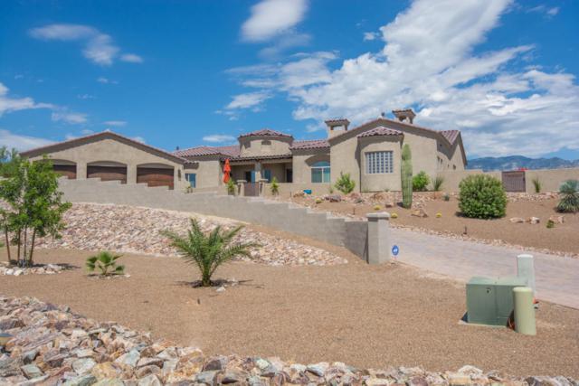 523 E Parker Point Place, Tucson, AZ 85737 (#21722007) :: Long Realty Company
