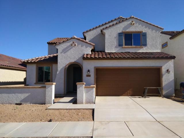 10917 E Roscommon Street, Tucson, AZ 85747 (#21722041) :: Re/Max Results/Az Power Team