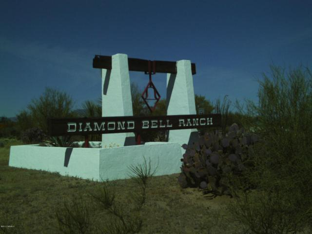 11195 S Wrangler Drive #179, Tucson, AZ 85736 (#21722042) :: Long Realty Company