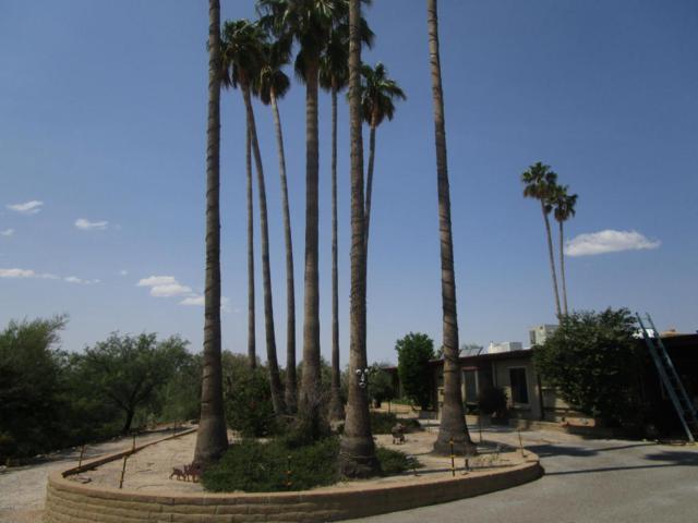 1438 W San Lucas Drive, Tucson, AZ 85704 (#21723692) :: The Anderson Team | RE/MAX Results