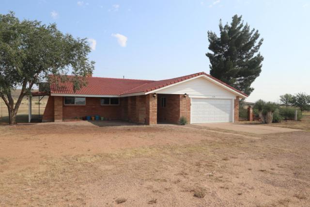 5218 E Mogollon Drive, Pearce, AZ 85625 (#21723810) :: My Home Group - Tucson