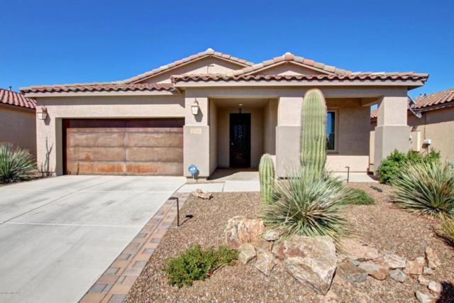 4464 W Harmony Ranch Place, Marana, AZ 85658 (#21724558) :: Long Realty - The Vallee Gold Team