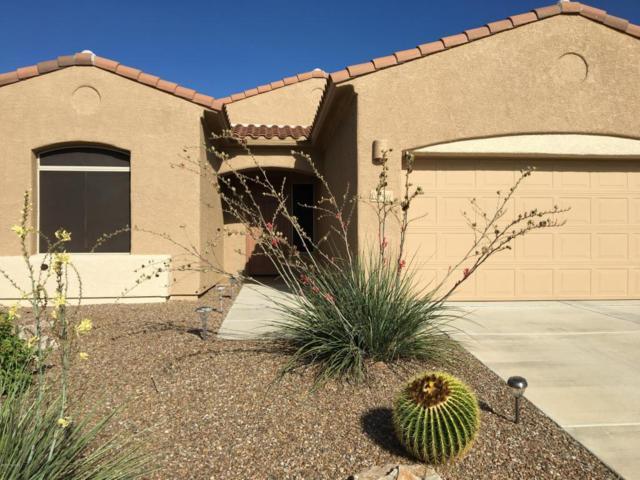 12591 N Gentle Rain Drive, Marana, AZ 85658 (#21724640) :: Keller Williams