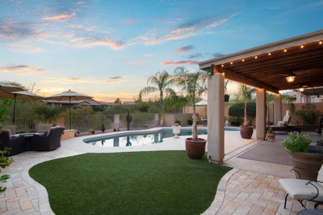 13695 N Bushwacker Place, Oro Valley, AZ 85755 (#21724726) :: Long Realty - The Vallee Gold Team