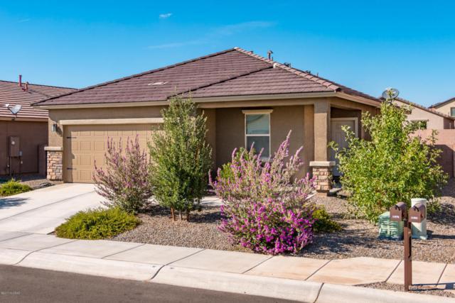 11374 W Folsom Point Drive, Marana, AZ 85658 (#21724741) :: RJ Homes Team