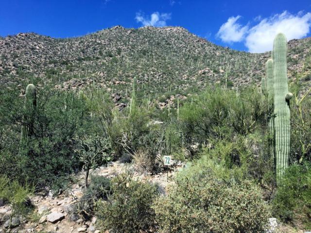 4550 W Cush Canyon Loop #72, Marana, AZ 85658 (#21724763) :: RJ Homes Team