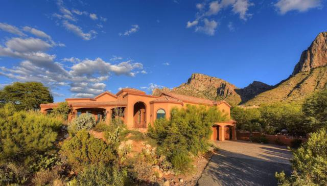 1661 E Crimson Canyon Place, Tucson, AZ 85737 (#21724791) :: Long Realty - The Vallee Gold Team