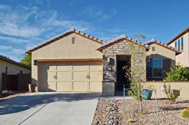 1282 W Versilia Drive, Oro Valley, AZ 85755 (#21726505) :: Long Realty - The Vallee Gold Team