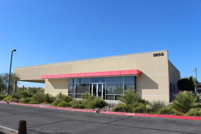 3850 W Linda Vista Boulevard, Tucson, AZ 85742 (#21726562) :: RJ Homes Team
