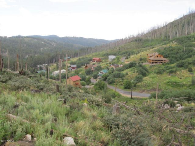 11060 E Flicker Lane E #1, Mt. Lemmon, AZ 85619 (#21726760) :: My Home Group - Tucson