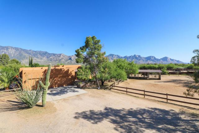 14750 N Bowman Road, Tucson, AZ 85739 (#21727228) :: Long Realty - The Vallee Gold Team