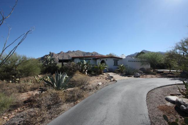 1205 E Moonridge Road, Tucson, AZ 85718 (#21727471) :: Long Realty - The Vallee Gold Team